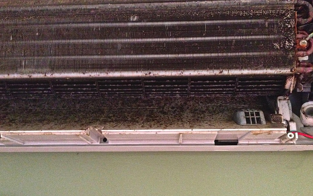 Dust accumulated on indoor unit fan and fins